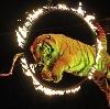 Цирки в Одесском